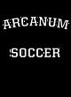ARCANUM Fan Favorite Heavyweight Hooded Unisex Sweatshirt