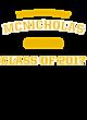 McNicholas Youth Electric Heather Hooded Sweatshirt