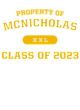 McNicholas Youth Heavyweight Sleeve Stripe Hooded Sweatshirt
