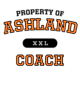 Ashland Fan Favorite Heavyweight Hooded Unisex Sweatshirt