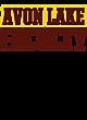 Avon Lake Classic Fit Heavy Weight T-shirt