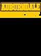 Auburndale Womens Ultimate Performance V-Neck T-shirt