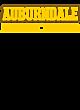 Auburndale Long Sleeve Tri-Blend Wicking Raglan Tee