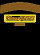 Auburndale Sport-Wick Heather Fleece Hooded Pullover