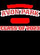 Avon Park Fan Favorite Heavyweight Hooded Unisex Sweatshirt