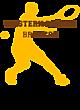 Western Brown Nike Legend Tee