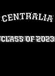 Centralia Fan Favorite Heavyweight Hooded Unisex Sweatshirt