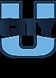 UCity Youth Heavyweight Sleeve Stripe Hooded Sweatshirt