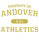 Andover Sport Tek Sleeveless Competitor T-shirt
