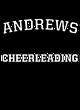 Andrews Tech Fleece Hooded Sweatshirt