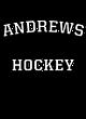 Andrews Ladies Fan Favorite Blend V-Neck Tee