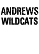 Andrews Holloway Electrify Long Sleeve Performance Shirt
