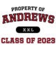 Andrews New Era Ladies Tri-Blend Pullover Hooded T-Shirt