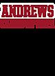 Andrews Ladies Kinergy 2 Color Long Sleeve Raglan T-Shirt