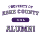 Ashe County Champion Heritage Jersey Tee