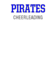 Swansboro Womens V-Neck Competitor T-shirt