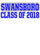 Swansboro Womens Ultimate Performance V-Neck T-shirt