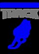 Swansboro Nike Dri-FIT Shoulder Stripe Polo