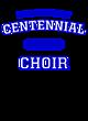 Centennial Heavyweight Crewneck Unisex Sweatshirt