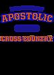 Apostolic Champion Heritage Jersey Tee