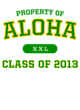Aloha Classic Fit Heavy Weight T-shirt