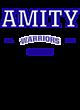 Amity Adult Baseball T-Shirt