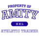 Amity Ladies Tri-Blend Performance T-Shirt