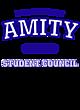 Amity Fan Favorite Youth Hooded Sweatshirt