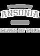 Ansonia Nike Core Cotton T-Shirt