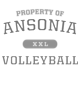 Ansonia New Era Ladies Tri-Blend Fleece Varsity Crew