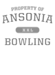 Ansonia Youth Tri-Blend Long Sleeve Hooded T-shirt