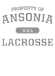 Ansonia Heavyweight Crewneck Unisex Sweatshirt