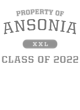 Ansonia Classic Fit Heavy Weight T-shirt