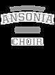 Ansonia Fan Favorite Heavyweight Hooded Unisex Sweatshirt