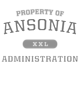 Ansonia Nike Ladies Dri-FIT Cotton/Poly Scoop Neck Tee