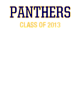 Platt Sport Tek Sleeveless Competitor T-shirt