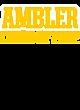 Ambler Champion Heritage Jersey Tee