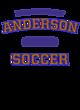 Anderson Ladies' Tri-Blend T-Shirt