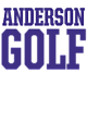 Anderson Womens Holloway Heather Electrify V-Neck Shirt
