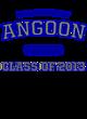 Angoon Womens Long Sleeve V-Neck Competitor T-Shirt