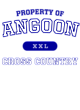 Angoon Nike Legend Tee