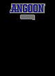 Angoon Nike Ladies Dri-FIT Cotton/Poly Scoop Neck Tee