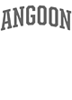 Angoon Ladies Scorecard T-Shirt