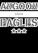 Angoon Tri-Blend V-Neck T-Shirt