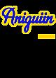 Aniguiin Nike Legend Tee