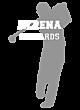 Alpena Nike Legend Tee