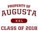 Augusta Holloway Youth Blue Chip Hoodie