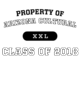 Arizona Cultural Classic Fit Heavy Weight T-shirt