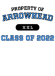 Arrowhead Womens Ultimate Performance V-Neck T-shirt