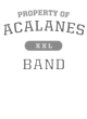 Acalanes Classic Fit Heavy Weight T-shirt